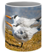 Royal Tern Coffee Mug