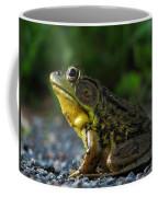 Rrrrrrbit 2 Coffee Mug