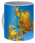 Rubber Rabbitbrush Off Hole-in-the-rock Road In Grand Staircase Escalante National Monument-utah Coffee Mug