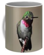 Ruby-throated Hummer Coffee Mug