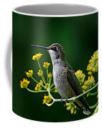 Ruby Throated Hummingbird 1 Coffee Mug