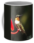 Ruby Throated Hummingbird 2 Coffee Mug