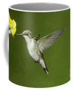 Ruby-throated Hummingbird At Flower Coffee Mug