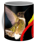 Ruby-throated Hummingbird Landing On Feeder Coffee Mug