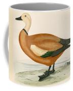 Ruddy Sheldrake Coffee Mug