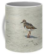Ruddy Turnstone Wading Bird - Arenaria Interpres Coffee Mug