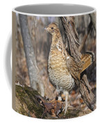 Ruffed Grouse On Mossy Log Coffee Mug