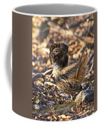 Ruffed Grouse Ruff Coffee Mug