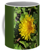 Ruffled Dandelion Coffee Mug