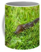 Rufous Garden Slug Coffee Mug