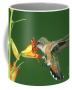 Rufous Hummingbird At Tiger Lily Coffee Mug
