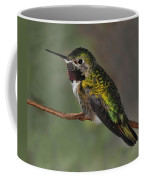 Rufous Hummingbird Coffee Mug