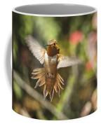 Rufous Coffee Mug