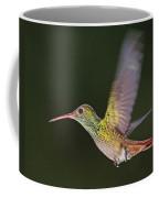 Rufous-tailed Hummingbird Coffee Mug