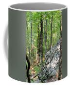 Rugged Terrain Of Boulder Field Coffee Mug
