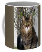 Runcius- Palm Sunday Kitty Coffee Mug