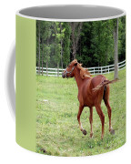 Running In The Breeze Coffee Mug