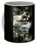 Running Over Rocks Coffee Mug