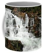 Running Water Glen Alpine Falls Coffee Mug