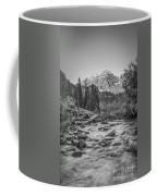 Runoff  Bw Coffee Mug