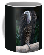 Ruppel's Griffon Coffee Mug