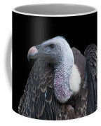 Ruppel's Griffon On Black Coffee Mug