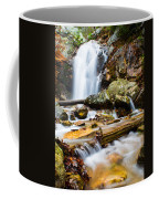 Rushing Falls Coffee Mug