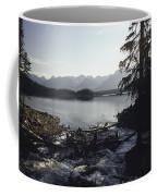 Rushing Stream Coffee Mug