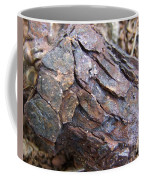 Rusted Rust Coffee Mug by Mary Deal