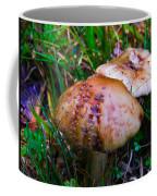 Rusty Mushroom Coffee Mug