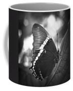 Rusty Tip Butterfly Black And White Coffee Mug