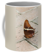 Rusty Tipped Page Butterfly Coffee Mug