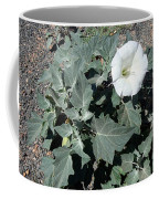 Sacred Datura Coffee Mug