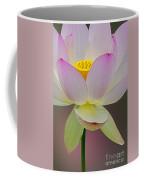 Sacred Lotus Blossom Coffee Mug