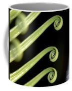 Sago Palm Leaf - 1 Coffee Mug