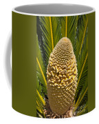 Sago Palm Seed Pod Coffee Mug