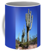 Saguaro At The Saguaro National Park Coffee Mug