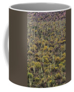 Saguaro Forest At The Foot Of Four Peaks Coffee Mug