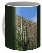 Saguaro Forest In The Superstitions Coffee Mug