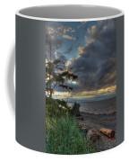 Salish Storm Coffee Mug