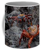 Sally Light Foot Crabs Galapagos Coffee Mug