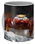 Sally Lightfoot Crab Galapagos Coffee Mug