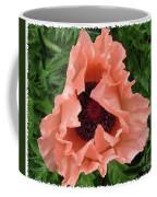 Salmon Colored Poppy Coffee Mug