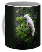Salmon Crested Cockatoo Coffee Mug by Sennie Pierson