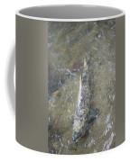 Salmon Spawning Coffee Mug