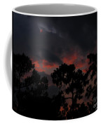 Salmon Sunset Coffee Mug