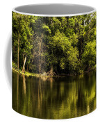Salt Creek In August Coffee Mug