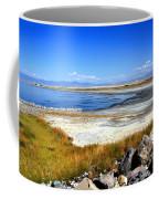 Salt Lake Utah Coffee Mug