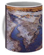 Salt Stream Confluence Coffee Mug
