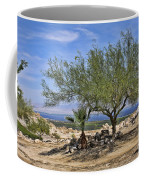 Salton Sea Oasis Coffee Mug
